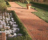 clay brick paver walkway cleaning